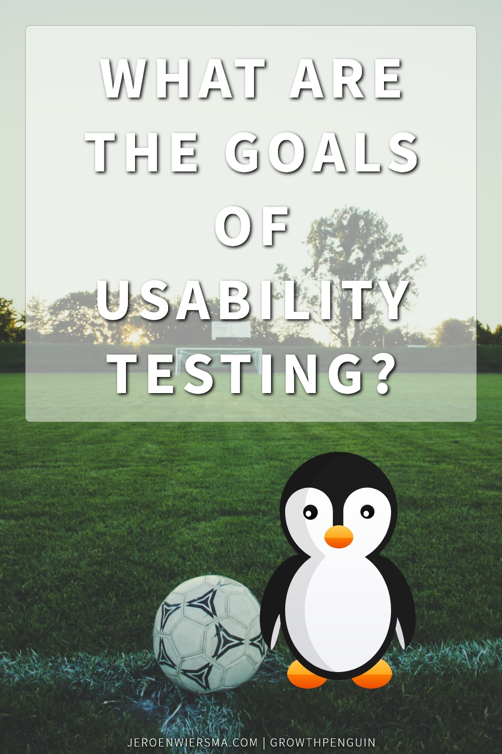 What are the goals of usability testing?
